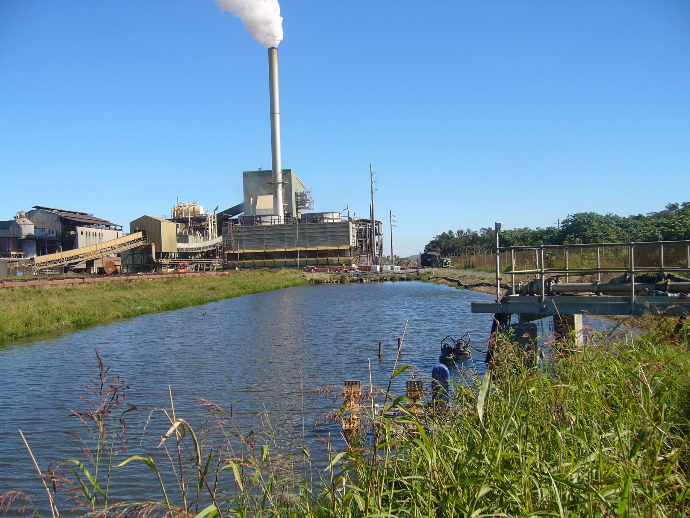 Rocky Point Power, Effluent Treatment Wetlands