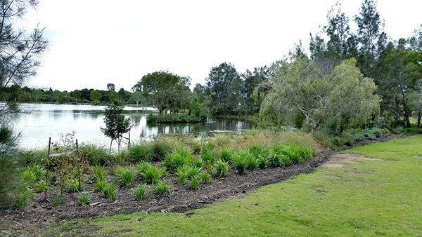 Norfolk Lake Foreshore Improvements