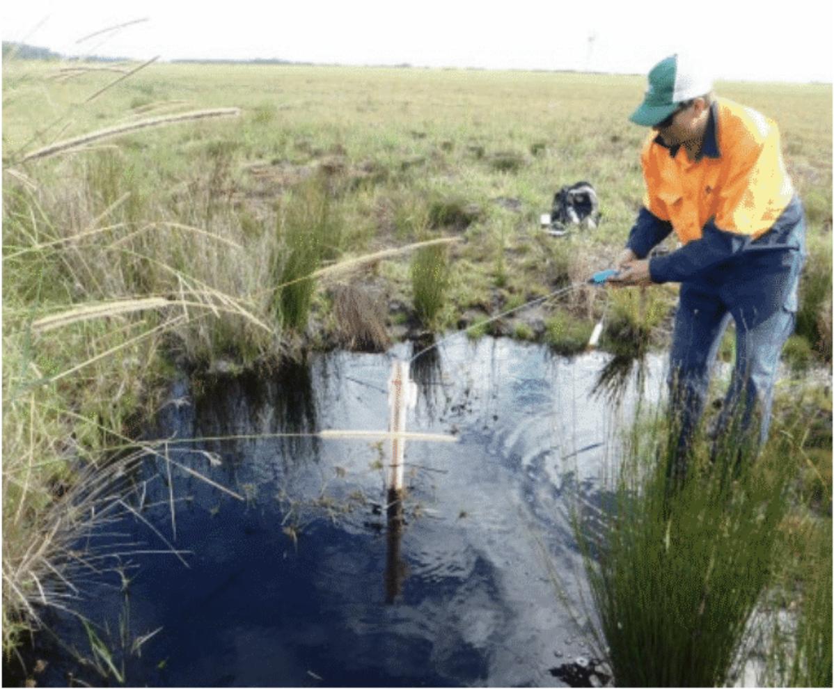 Acid Frog Habitat Management