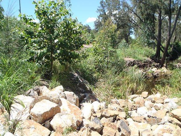Bundamba Creek, Stream and Riparian Restoration Works