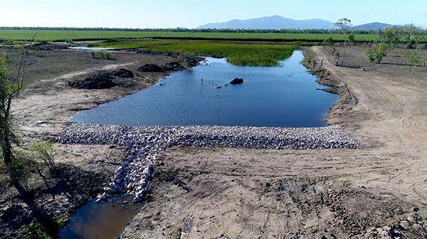 Barratta Creek – Constructed Wetland